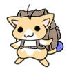 修学旅行で買った星猫ちゃん
